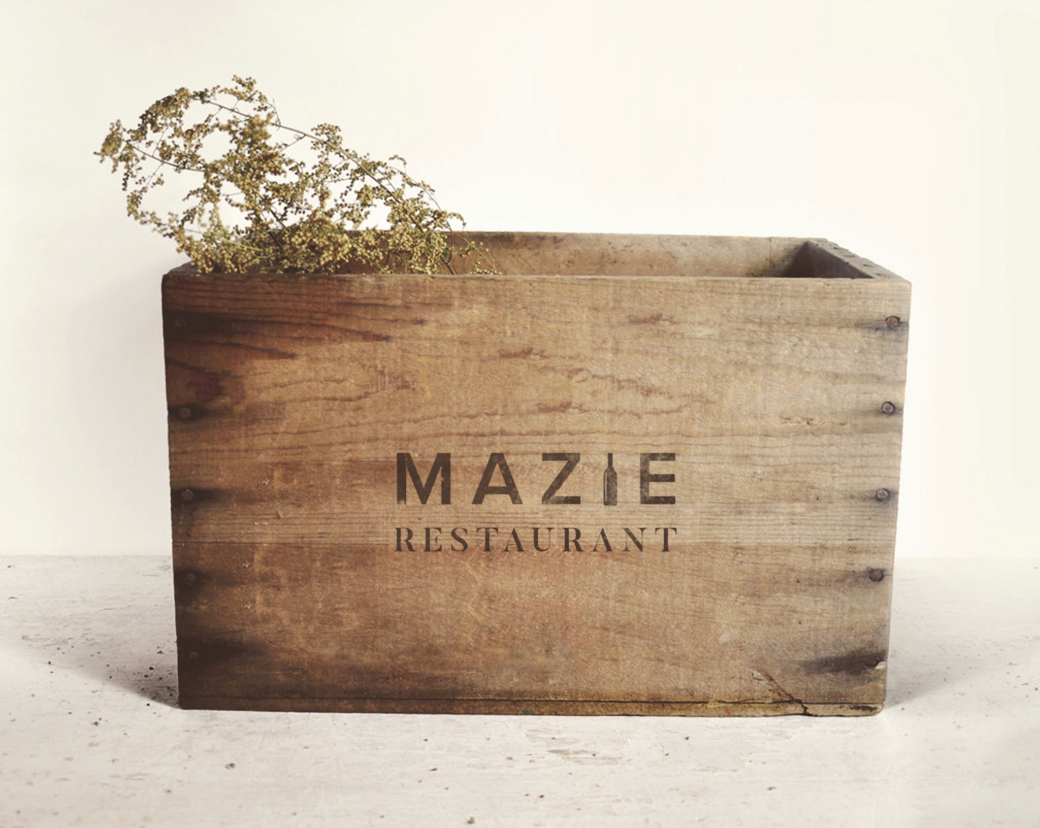 MAZIE Transport box